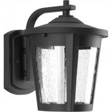 Progress P6078-3130K9 - East Haven LED Wall Lantern