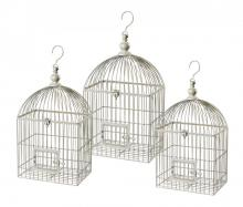 Bird Cages in Springdale